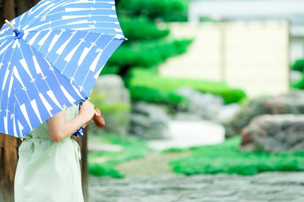白鷺柄の日傘